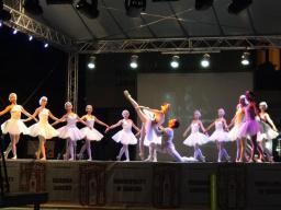 Bansko Opera Fest 2016. Swan Lake.